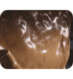 Molasses Makes the Corn and Protein Pellets Taste Good to Your Calf